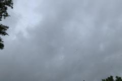 GOTA dipole against a dark FD sky